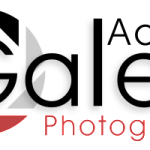 logo_galea200