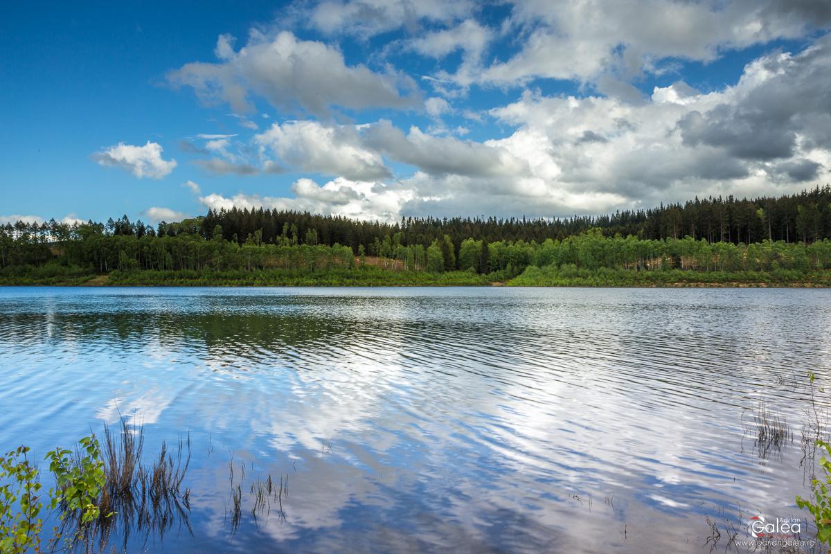 Eifel National Park Reflection