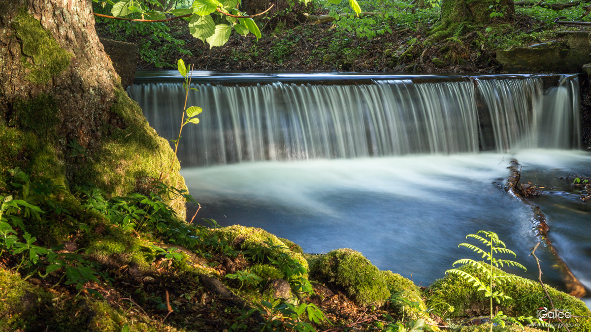 Eifel National Park Waterfall