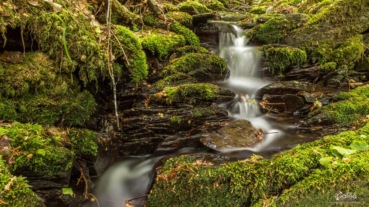 Eifel Park Waterfall