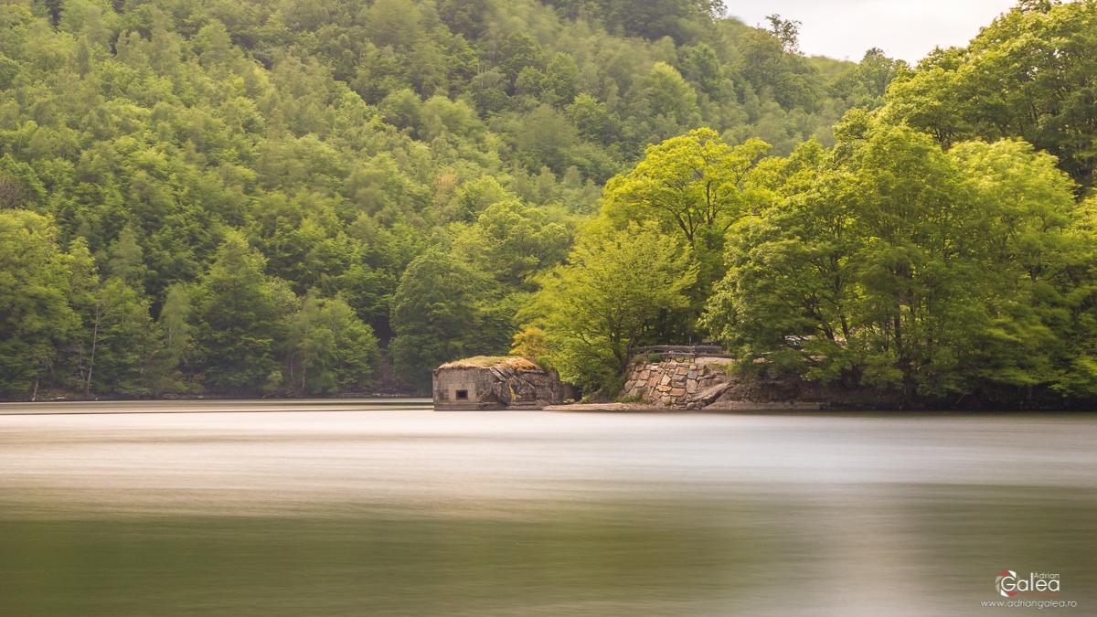 Lake Bunker